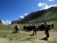 Tarboche valley near at Mount Kailash