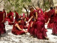 Monks activities in Sera